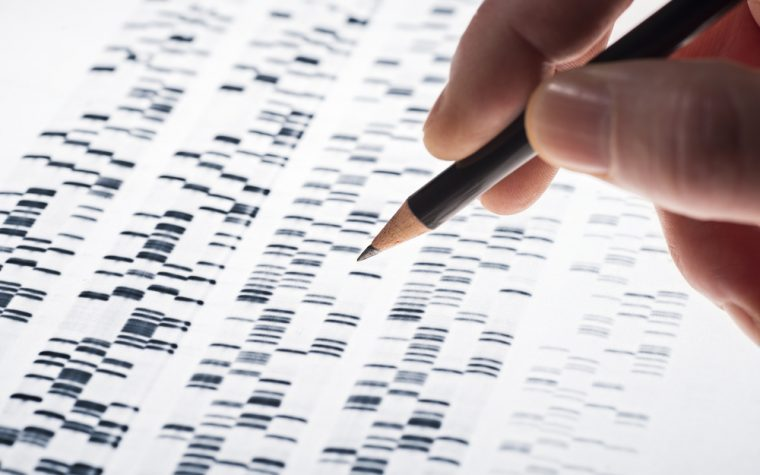 New Mutation in FECH Gene Linked to EPP, Study Shows