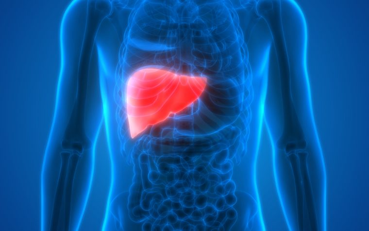 liver cancer and AHP